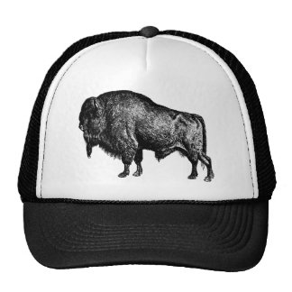 Grabado de madera del vintage del bisonte american gorra