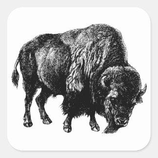 Grabado de madera del vintage del bisonte pegatina cuadrada