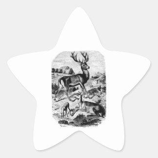 Grabado de madera del vintage del ciervo común pegatina forma de estrella personalizada