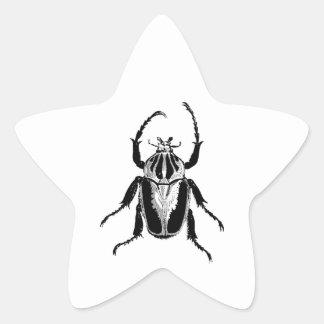 Grabado de madera del vintage del insecto del inse calcomanía forma de estrella personalizada