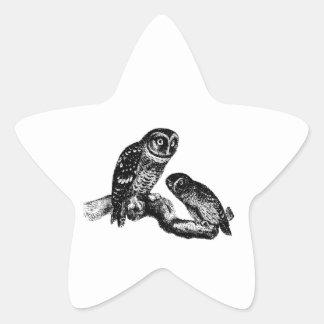 Grabado de madera del vintage del pájaro de los bú pegatinas forma de estrellaes
