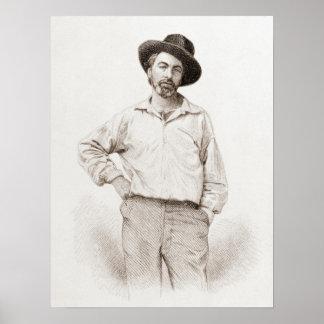 Grabado de Walt Whitman Póster
