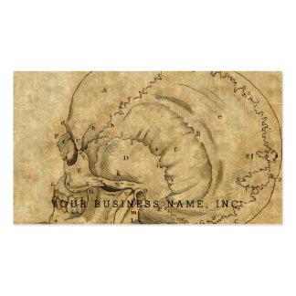 Grabado del perfil del cráneo del vintage puesto tarjetas de visita
