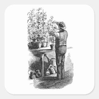 Grabado que cultiva un huerto del florista antiguo colcomania cuadrada