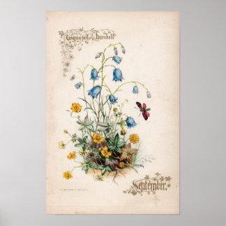 Grabados botánicos, septiembre póster