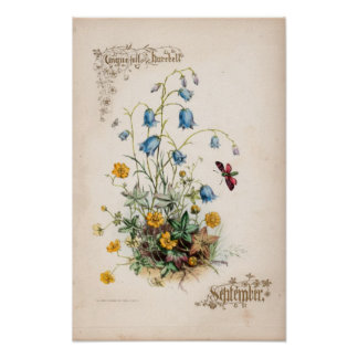 Grabados botánicos septiembre posters