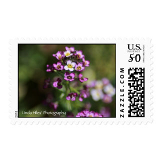 Grace Abounds Postage
