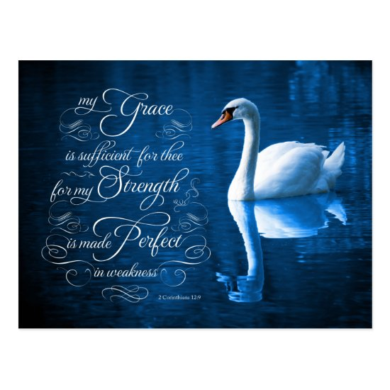 Grace Bible Verse Mute Swan Postcards