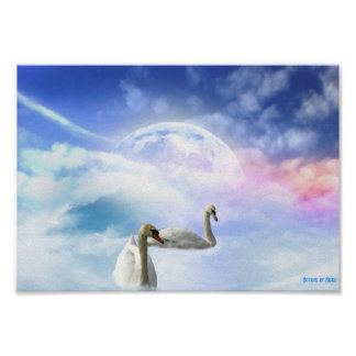 Grace in Space - Swans Swimming Posters