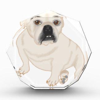 Grace Mertes Rescued Bulldogs Awards