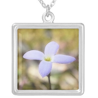 Graceful Bluet Flower Silver Plated Necklace