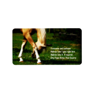 Graceful Bowing Horse Label