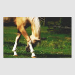 Graceful Bowing Horse Rectangle Sticker