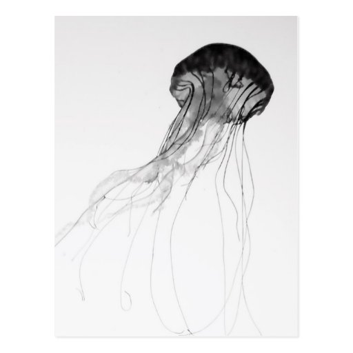 Graceful Jellyfish Post Cards