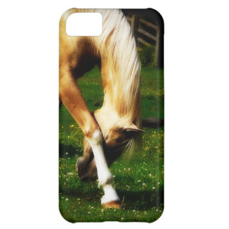 Graceful Palomino Horse Bow Case For iPhone 5C