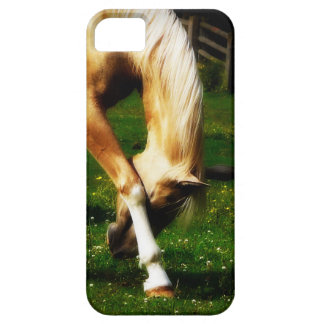 Graceful Palomino Horse Bow iPhone SE/5/5s Case