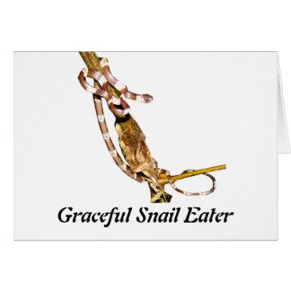 Graceful Snail Eater Card