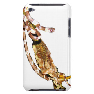 Graceful Snail Eater iPod Case-Mate Cases
