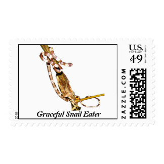 Graceful Snail Eater Postage Stamps