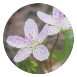 Graceful Spring Beauty Flowers Dinner Plates
