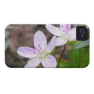 Graceful Spring Beauty Flowers iPhone 4 Case