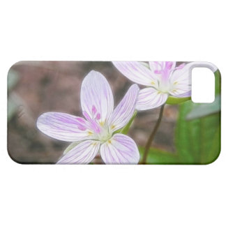Graceful Spring Beauty Flowers iPhone 5 Cases