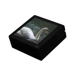 Graceful Swan Gift Box