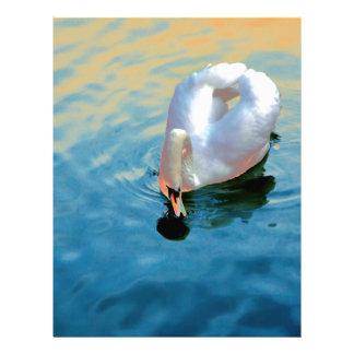 Graceful swan letterhead