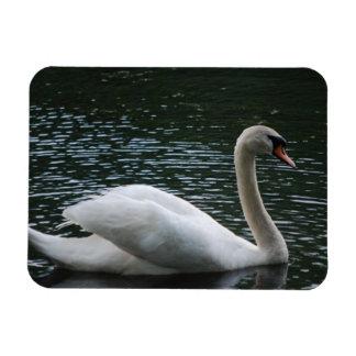 Graceful Swan Magnet Flexible Magnets