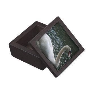Graceful Swan Premium Gift Box