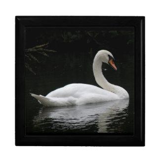Graceful White Swan Gift Box