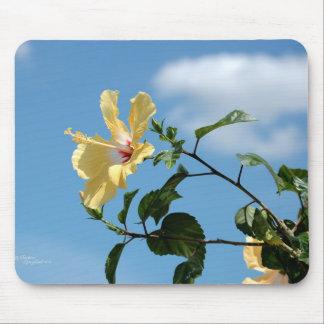 Graceful yellow hibiscus flower Mousepad