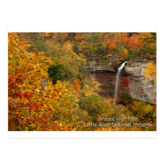 Graces High Falls Postcard