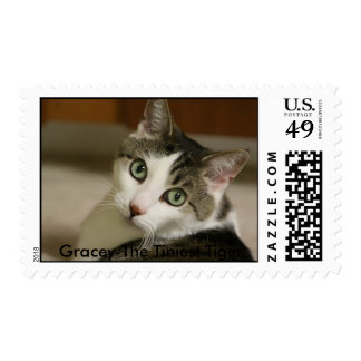 Gracey-The Tiniest Tiger Postage Stamp