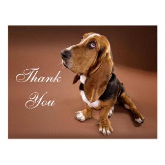 Gracias Basset Hound que saluda la postal