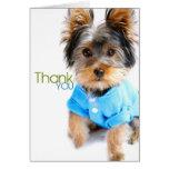 Gracias Card_Yorkie