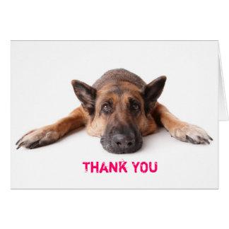 Gracias cardar el perro de pastor alemán tarjeta de felicitación