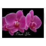 Gracias cardar -- Orquídeas Tarjeta