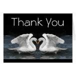 Gracias --  Cisnes mudos blancos Tarjetas
