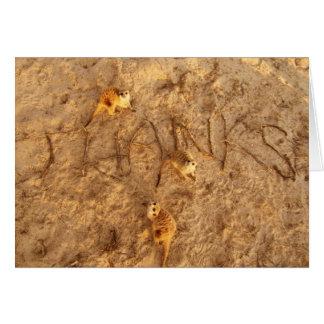 Gracias de Meerkats - tarjeta