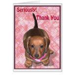 Gracias de pequeño perrito del Dachshund de A Felicitacion