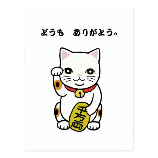 Gracias Domo Arigato que los japoneses le agradece Postales