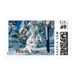 Gracias estacionales del boda del invierno de la sellos