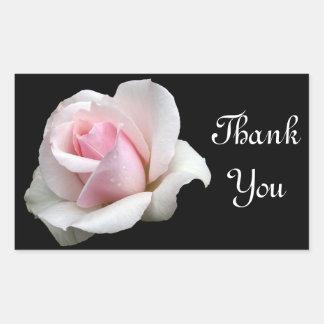 Gracias etiqueta color de rosa rosada del pegatina
