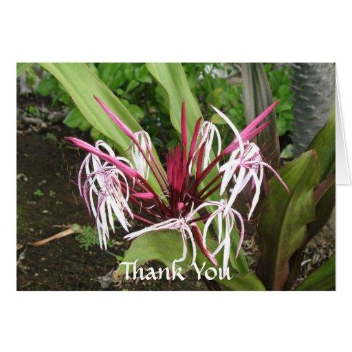 Gracias florales tropicales tarjeta pequeña