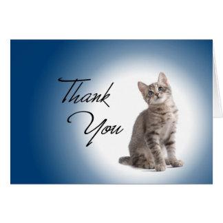 Gracias gatito en azul marino felicitaciones