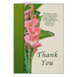 Gracias, gladiolo rosado felicitación
