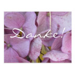 Gracias! (hortensias (pink) - tarjeta postal