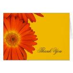 gracias las flores anaranjadas de la margarita del tarjeta de felicitación
