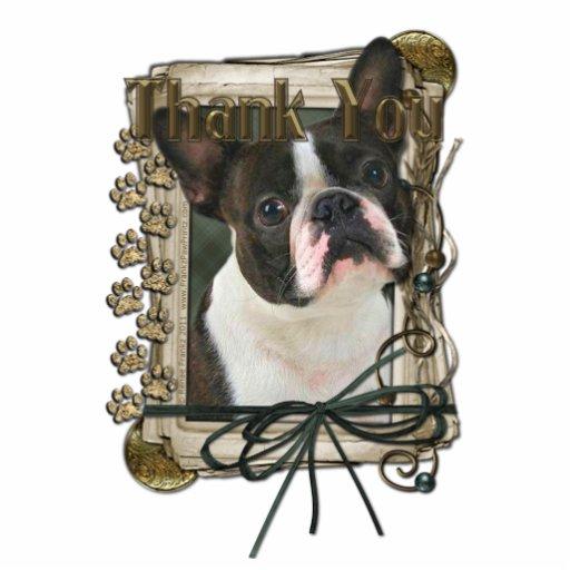 Gracias - las patas de piedra - Boston Terrier Esculturas Fotográficas